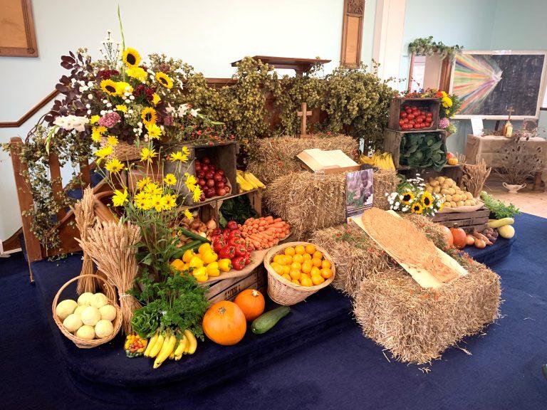 The harvest display
